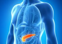 Identifican una nueva vía para el tratamiento del cáncer de páncreas