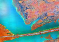 Revelan la influencia del cambio climático y el cambio global en las enfermedades infecciosas