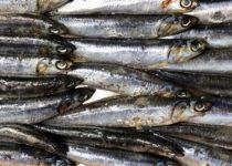 El consumo de ácidos grasos omega 3 protege frente al cáncer de próstata avanzado