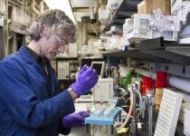 Estudian el papel de la progesterona en la fertilidad y el cáncer de mama
