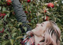 Una manzana al día mantiene lejos a cálculos renales